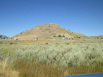 94938 SPRING DR, Chilcoot, CA 96105 - Photo 2