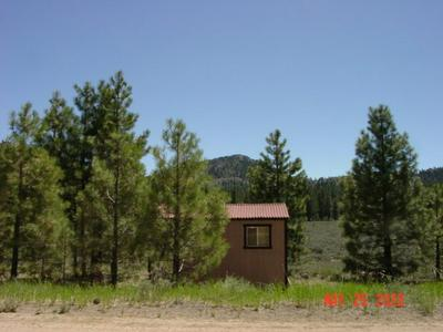 7303 DIXIE VALLEY RD, Chilcoot, CA 96105 - Photo 2