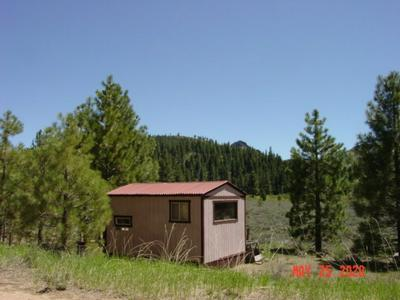 7303 DIXIE VALLEY RD, Chilcoot, CA 96105 - Photo 1