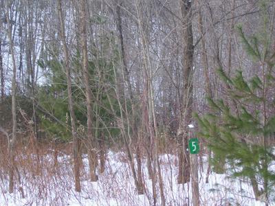 5 ST. VINCENTS POINT RD, Lackawaxen, PA 18435 - Photo 2