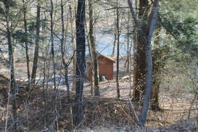 951 WINTERDALE RD, Starlight, PA 18461 - Photo 2