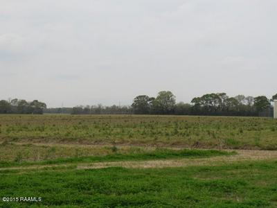 700 GUILLOT RD, Youngsville, LA 70592 - Photo 2