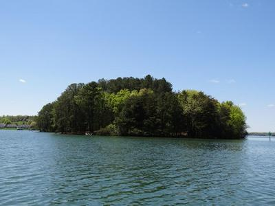 0 CHRISTMAS TREE ISLAND, Union Hall, VA 24176 - Photo 2