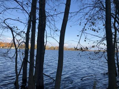 LAKE AVENUE, Mendon, MI 49072 - Photo 2