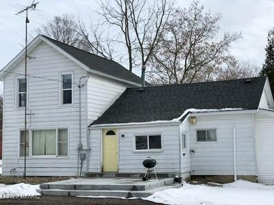 802 WASHINGTON ST, Lakeview, MI 48850 - Photo 1