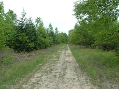 000 HULKONEN ROAD, Kaleva, MI 49645 - Photo 2
