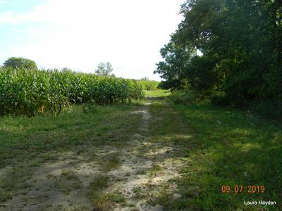 APPR 10800 S SHERIDAN ROAD, Fenwick, MI 48834 - Photo 2