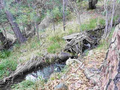 14903 FOUNTAIN HOUSE RD, Dobbins, CA 95935 - Photo 2