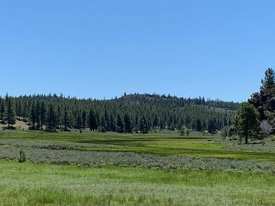 00 FRENCHMAN LAKE RD., Chilcoot, CA 96105 - Photo 2