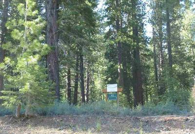 12062 SADDLEBACK DR, Truckee, CA 96161 - Photo 2