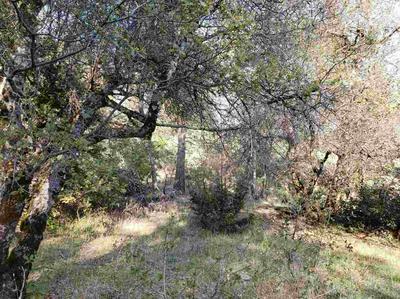 14903 FOUNTAIN HOUSE RD, Dobbins, CA 95935 - Photo 1