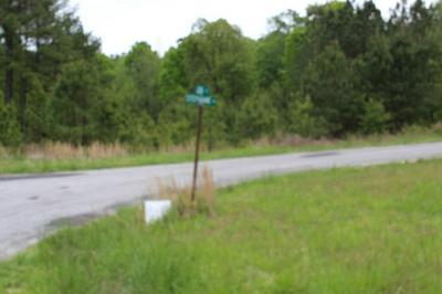 0 STEPHANIE ROAD, HUNTINGDON, TN 38344 - Photo 2