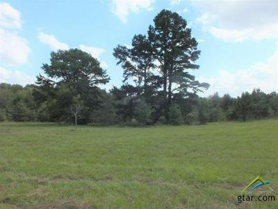 TBD CR 3238, Cushing, TX 75760 - Photo 1