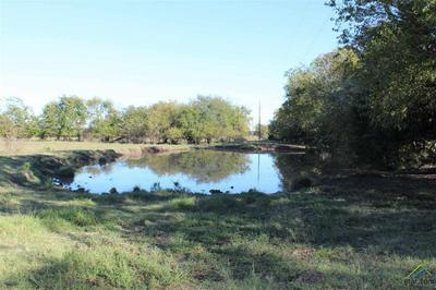 000 CR 13400, Pattonville, TX 75468 - Photo 1