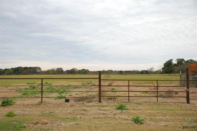 TBD CR 3644, Saltillo, TX 75478 - Photo 2