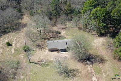 233 COUNTY ROAD 3130, Cookville, TX 75558 - Photo 1