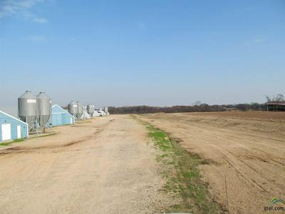 1703 COUNTY ROAD 3310, Pickton, TX 75471 - Photo 2