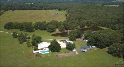 2213 COUNTY ROAD 3140, Cookville, TX 75558 - Photo 2