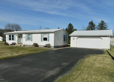 314 CEMETERY ST, Hughesville, PA 17737 - Photo 2