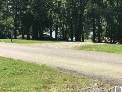 000 CAPTIAN LN, Gilbertsville, KY 42044 - Photo 2