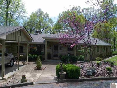 1880 SLEDD CREEK RD, Gilbertsville, KY 42044 - Photo 1