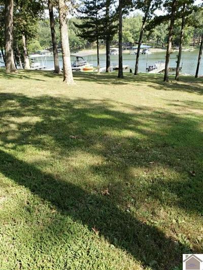000 WINDSOR COURT, Gilbertsville, KY 42044 - Photo 1