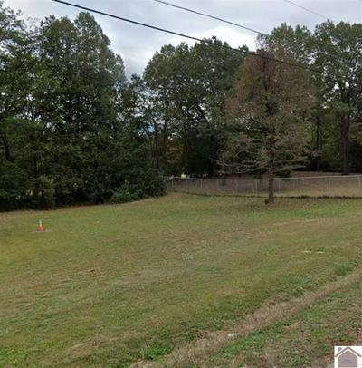 541 MARSHALL CIR, Gilbertsville, KY 42044 - Photo 1