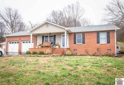 226 WILSON AVE, Smithland, KY 42081 - Photo 1