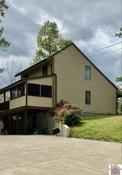 298 CAMBRIDGE SHORES DR, Gilbertsville, KY 42044 - Photo 2