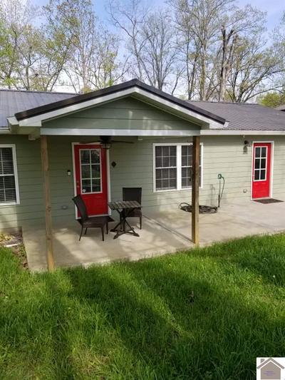 351 CAMBRIDGE SHORES DR, Gilbertsville, KY 42044 - Photo 1