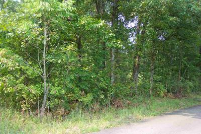0 CROWELL ROAD, Symsonia, KY 42082 - Photo 1