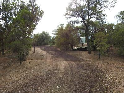 1756 BINDER ROAD, Pinedale, AZ 85934 - Photo 2