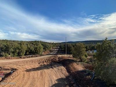 1740 THISTLE ROAD, Pinedale, AZ 85934 - Photo 1