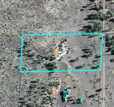 5194 PINEDALE WASH RD, Pinedale, AZ 85934 - Photo 2