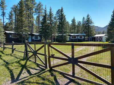 25329 CORONADO TRL, Alpine, AZ 85920 - Photo 2