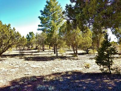 1741 TOSCA PLACE, Pinedale, AZ 85934 - Photo 1