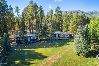 25329 CORONADO TRL, Alpine, AZ 85920 - Photo 1