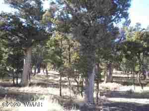 5088 E TOSCA CIRCLE, Pinedale, AZ 85934 - Photo 1