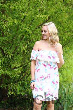 Everly ~ Flamingo Tango Dress