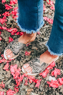 Free People ~ Rio Vista Slides