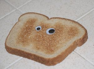 22 11 2014 02 47 56 a piece of toast with eyes