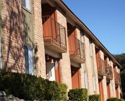 treehouse apartments san marcos tx