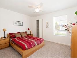 Lee Vista Club Apartments For Rent