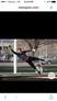 Athlete 1007018 square