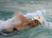 Megan Pierce Women's Swimming Recruiting Profile