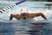 Allison Vela Women's Swimming Recruiting Profile