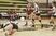 Athlete 1536447 square