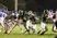 Dominic Collado Football Recruiting Profile