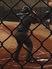 Ashanti Jackson Baseball Recruiting Profile