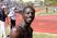 Kofi Forson Men's Track Recruiting Profile